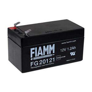 FG20121
